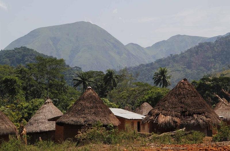 Интересные факты о Гвинее