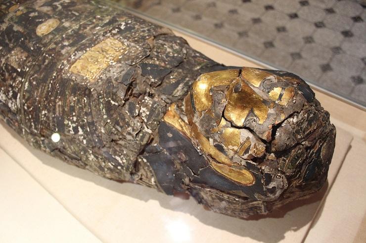 Интересные факты о мумиях