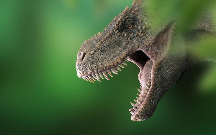 Интересные факты о тираннозавре