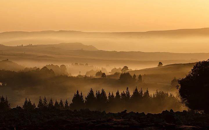 Интересные факты о тумане