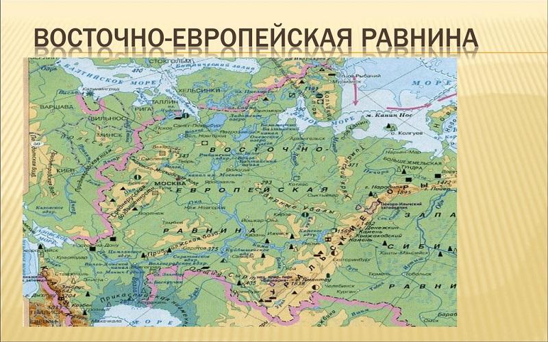 Интересные факты о Восточно-Европейской равнине