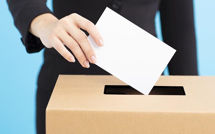 Интересные факты о выборах