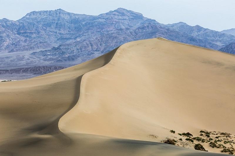 Интересные факты о Западной Сахаре