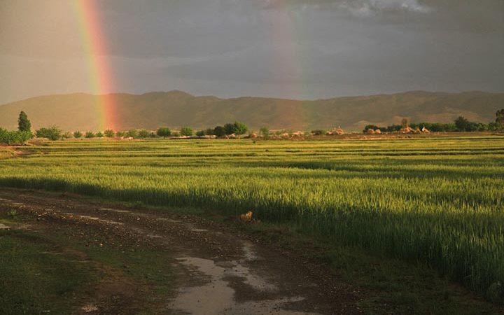 Интересные факты об Афганистане
