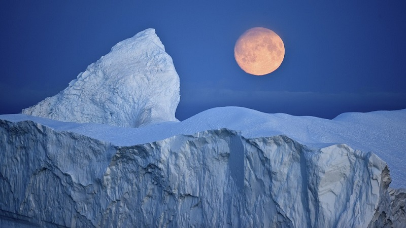 Интересные факты об Арктике
